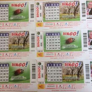 Bingo, 01.04.2021